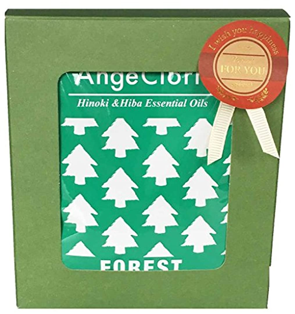 パラシュート地平線登山家クリスマスプチギフト 入浴剤6包入り