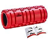 DB Praise フォームローラー Foam Roller 9色 スポーツ トレーニング ストレッチ 器具 解説書付き (G Red)
