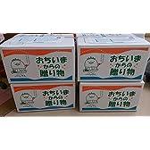 愛媛県産 選りすぐり 品種・サイズおまかせ 最高級 みかん 5kg