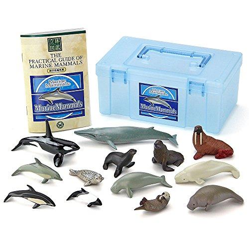 カロラータ 哺乳類 フィギュア ( 立体図鑑 ) クジラ/イルカ リアル フィギュアボックス [解説書付き] 食品衛生法クリア 13種