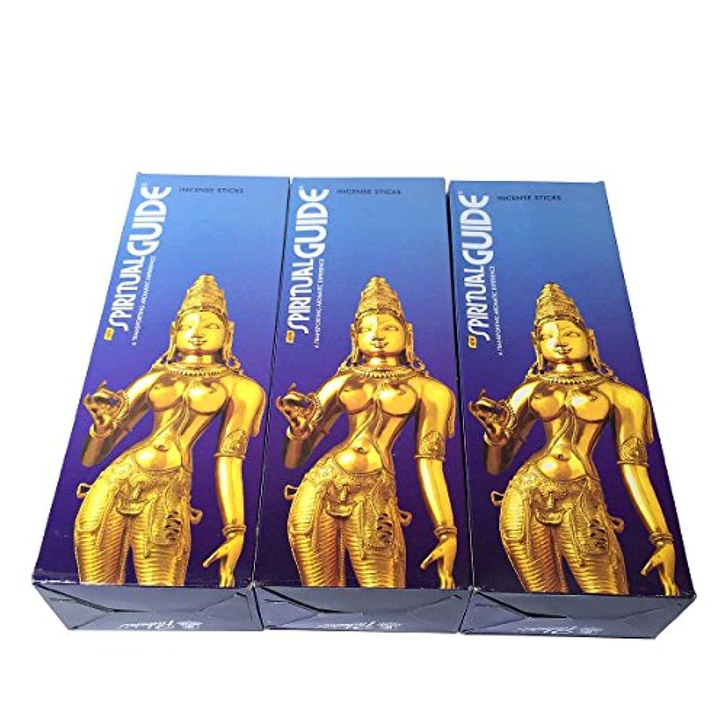 サロン破滅的なあいまいなスピリチュアルガイド香スティック 3BOX(18箱) /PADMINI SPIRITUALGUIDE/インセンス/インド香 お香 [並行輸入品]