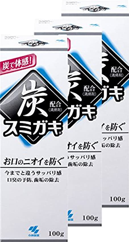 準備ができてペインティング魅力【まとめ買い】スミガキ 炭配合(清掃剤) 口臭予防 歯みがき ハーブミントの香り 100g×3個