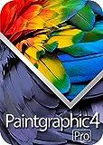 Paintgraphic 4 Pro (最新)|win対応|ダウンロード版