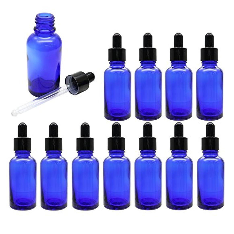 広いひまわり電気陽性palaisgent スポイトキャップが付いた遮光瓶 30ml (ブルー, 12本)