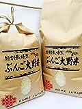 九州のお米 清流の里 豊後大野米 大分県産ヒノヒカリ 平成28年産 10kg
