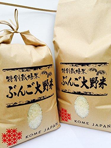 九州のお米 清流の里 豊後大野米 大分県産 ヒノヒカリ 平成28年産 5kg
