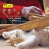 NHK BSプレミアム 「岩合光昭の世界ネコ歩き」 ORIGINAL SOUNDTRACK 2