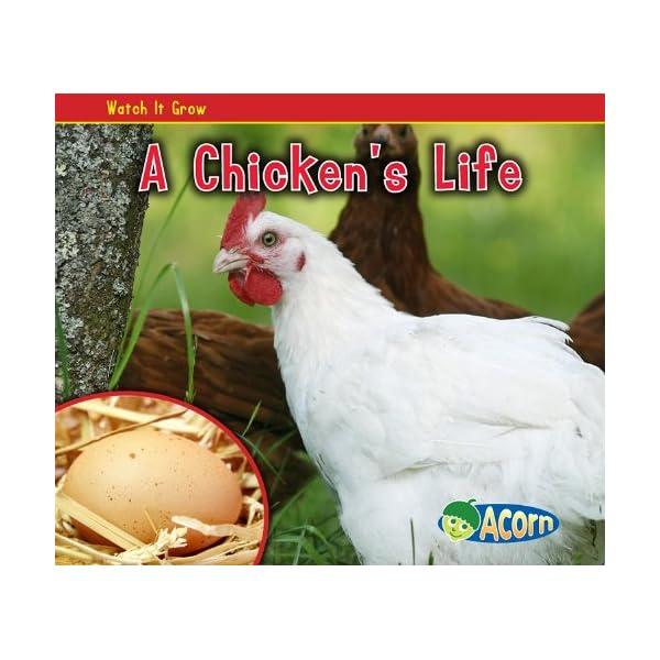 A Chickens Life (Acorn: ...の商品画像
