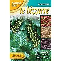 野菜の種 アラビカコーヒー GL17/1