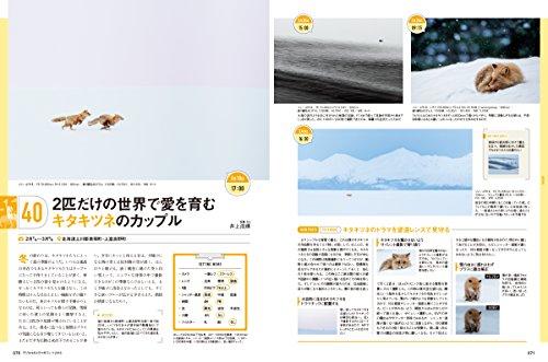 デジタルカメラマガジン2018年3月号