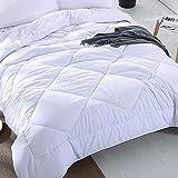 DJBNQ 冬毛布寝具布団、マイクロファイバーキルトブランケット充填、格天井毛布4コーナーリボンデザイン、通気性と皮膚 ympathetic,220x240cm