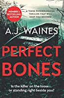 Perfect Bones: a tense psychological thriller that will keep you hooked
