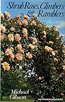 Shrub Roses, Climbers and Ramblers