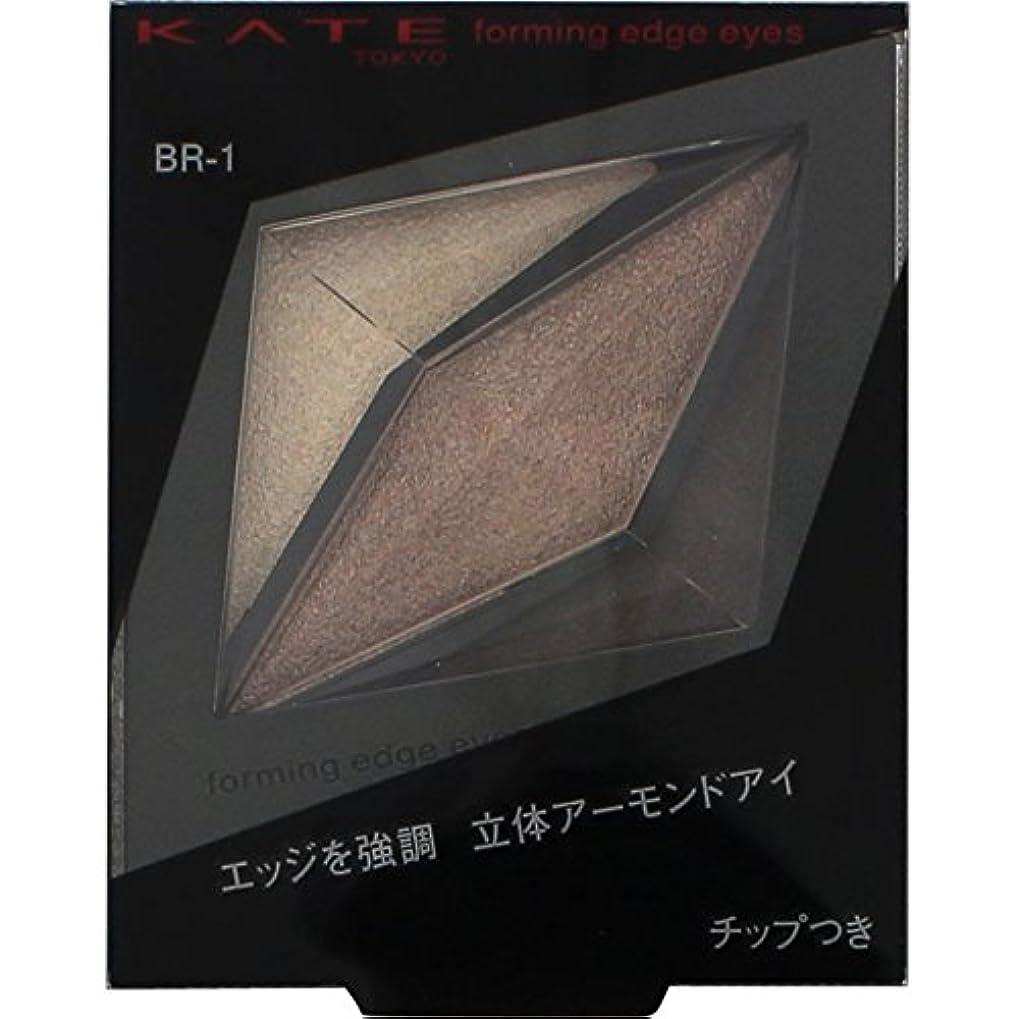ブラケット赤外線恵みKATE(ケイト) アイメイク アイシャドウ 2g