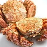 身も味噌もたっぷり!稚内産 「極」 毛ガニ 700g×2尾  毛蟹 毛がに ※蟹の剥き方パンフレット付