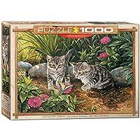 ジグソーパズル 1000ピース ユーログラフィックス ダブル・トラブル 6000-0796