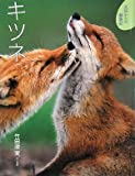 キツネ (北国からの動物記)
