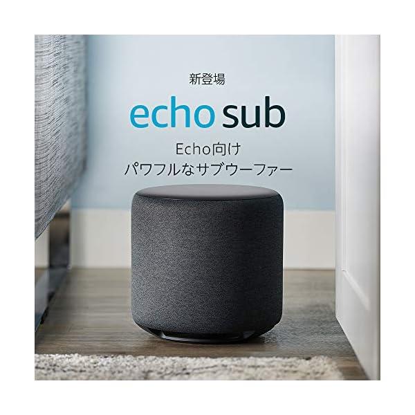 Echo Sub (エコーサブ) - Echo...の紹介画像2