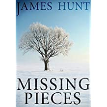 Missing Pieces (A North and Martin Abduction Mystery Book 2)