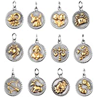 Generic DIY Making Charm Twelve Constellation Pendant Charm Stainless Steel Keyring Charms for Crafting Supplies (Golden)12pcs