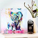 MOHOO 絵画 油絵 壁掛け ポスター キャンバス フレームなし 芸術 モダン 現代 インテリア 壁飾り 象 50x50CM
