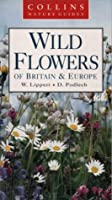Wild Flowers (Collins Nature Guide)
