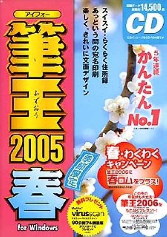 感動するレコーダーダーベビルのテス筆王 2005 春 for Windows CD-ROM版
