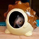 Cathyのハウス 小動物のハウス 隠れ家 陶器 装飾 超可愛い ハムスター・ネズミ・チンチラ おへや 遊びところ (ハリネズミさん, L)