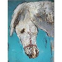 DIY ペイントペイントバイナンバー 大人用 ブラシ付き ペイントバイナンバーキット 大人 子供 初心者 美しい動物の絵 16 x 20インチ Framed PNMXA14713