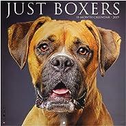 Just Boxers 2019 Calendar