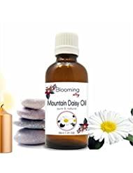 Mountain Daisy Oil (Celmisia Semicordata) Essential Oil 30 ml or 1.0 Fl Oz by Blooming Alley