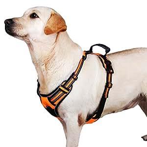 Lalawow 犬用ハーネス 胴輪 小型犬 中型犬 大型犬 反射材料 (L, オレンジ)