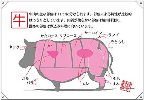 ドロップ幕(ハンプ) 牛 部位イラスト No.69076 (受注生産)