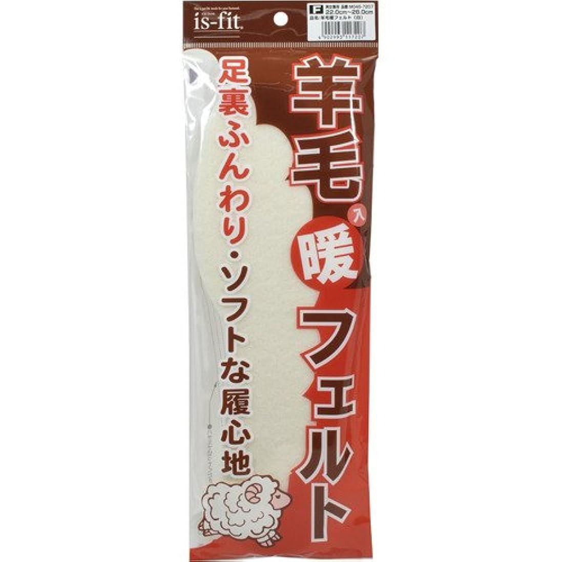 位置づける乳剤効果的にis-fit(イズフィット) 羊毛入り暖フェルト 男女兼用 22.0-28.0cm 白