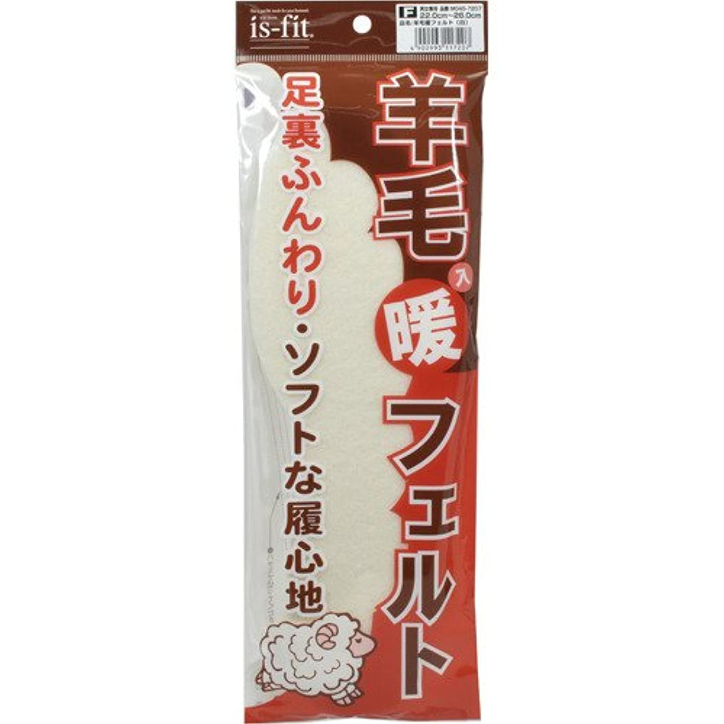 形実質的に楽しむis-fit(イズフィット) 羊毛入り暖フェルト 男女兼用 22.0-28.0cm 白