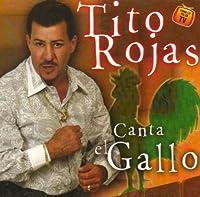 Canta El Gallo: Exitos