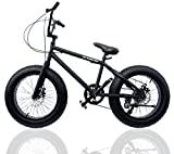 ファットバイク FAT BIKE 20インチ 自転車 ギア付 (BLACK/BLACK, 20インチ)