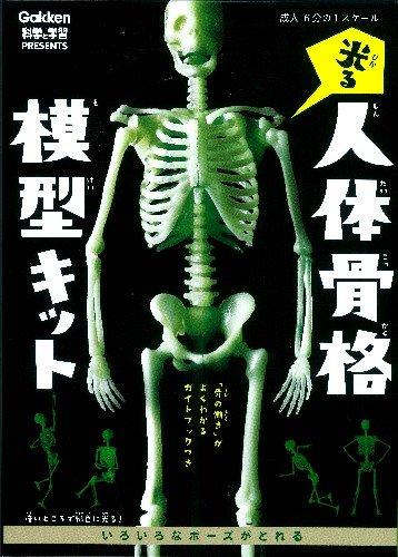 光る!人体骨格模型キット 科学と学習PRESENTS ([バラエティ])