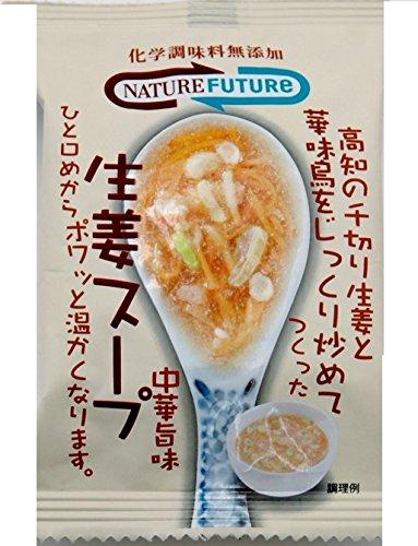 ネイチャーフューチャー 生姜スープ 10.6g
