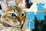 家猫通信08