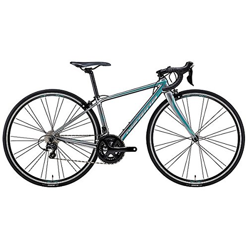 MERIDA(メリダ) 2018年モデルSCULTURA 410 フレームサイズ:38cm カラー:ES38(SILVER) 18AMS041388-ES38