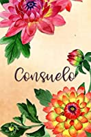 Consuelo: Personalized Journal for Her (Su Diario)