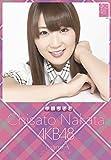クリアファイル付 (卓上)AKB48 中田ちさと カレンダー 2015年