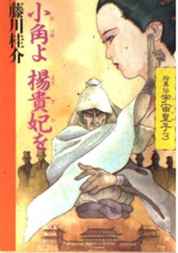 拾異伝宇宙皇子(うつのみこ) (3) (角川文庫)の詳細を見る