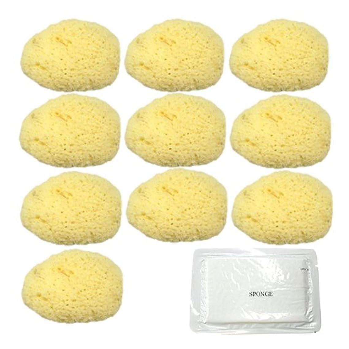広げるクレデンシャルチップユタカ 天然海綿スポンジ(フェイススポンジ) 大 × 10個 + 圧縮スポンジセット