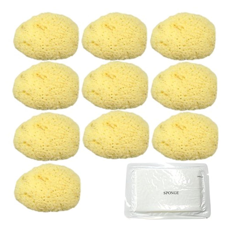 ユタカ 天然海綿スポンジ(フェイススポンジ) 大 × 10個 + 圧縮スポンジセット
