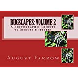 BugScapes: Volume 2: A Photographic Tribute to Insects & Spiders (English Edition)
