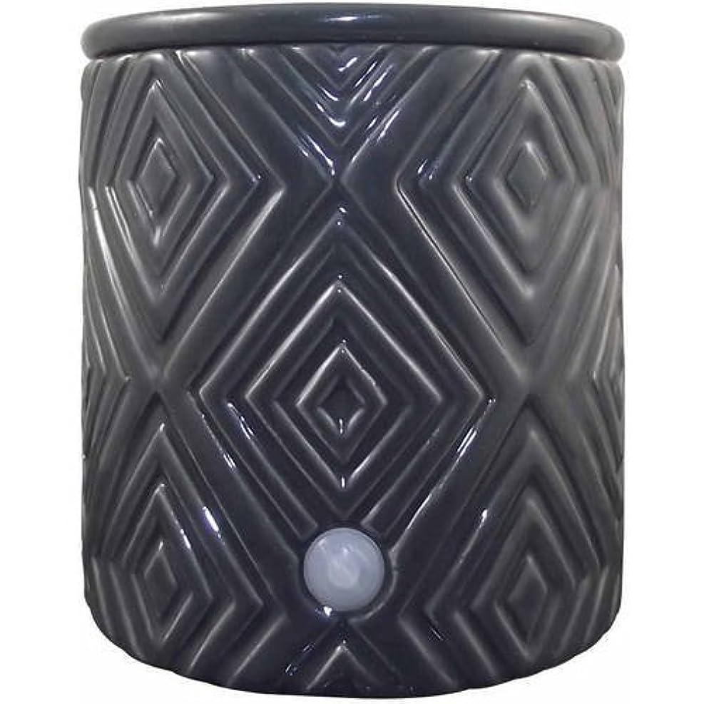 灌漑拒絶印をつけるElectric Wax Warmer – Use to Melt Scented Candleキューブ – グリーン装飾 – アロマセラピーAcessory – Fill Yourホームwith Fragrance by...