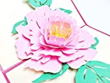 creve ポップアップ グリーティング カード 牡丹の花 ピオニー (ピンク)