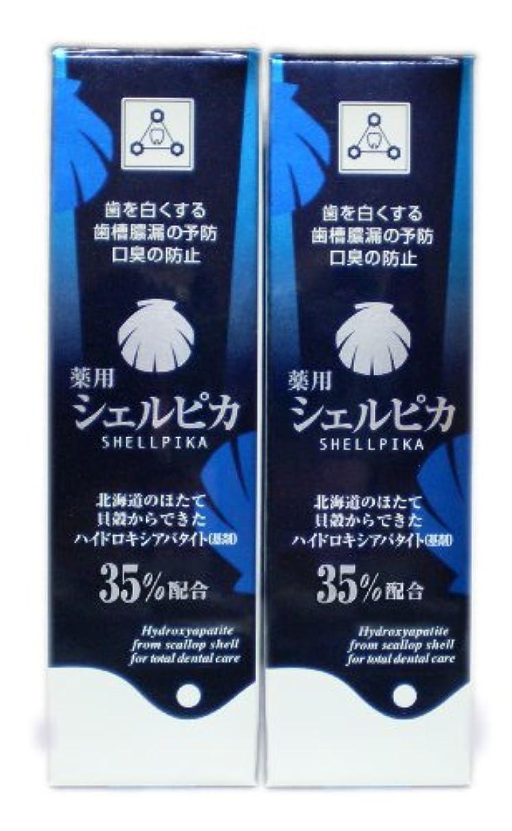ホイールルーキーフリッパー薬用ハミガキ シェルピカ 2本セット